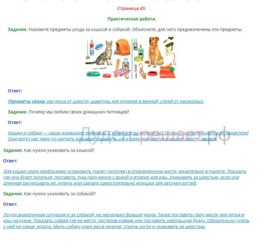 Окружающий мир 1 класс Плешаков 2 часть страница 43