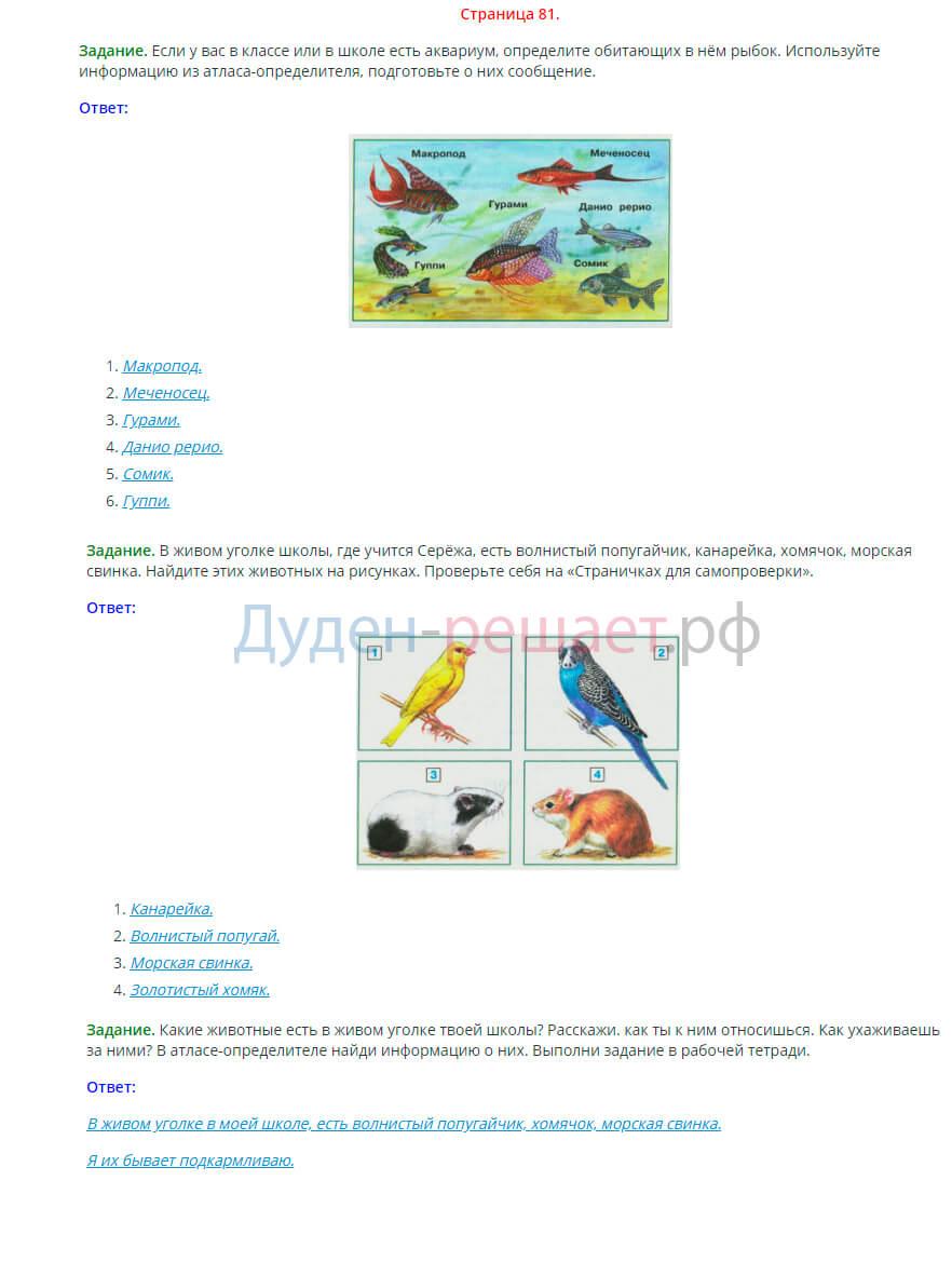 Окружающий мир 2 класс Плешаков 1 часть страница 81