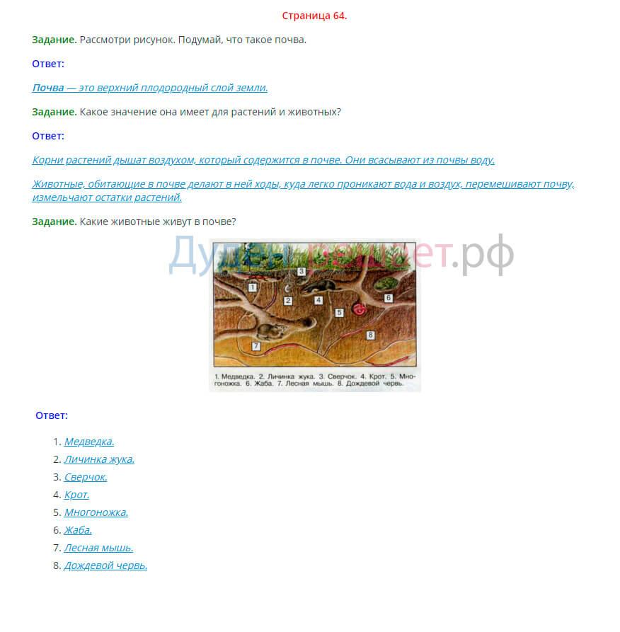 Окружающий мир 3 класс Плешаков 1 часть страница 64